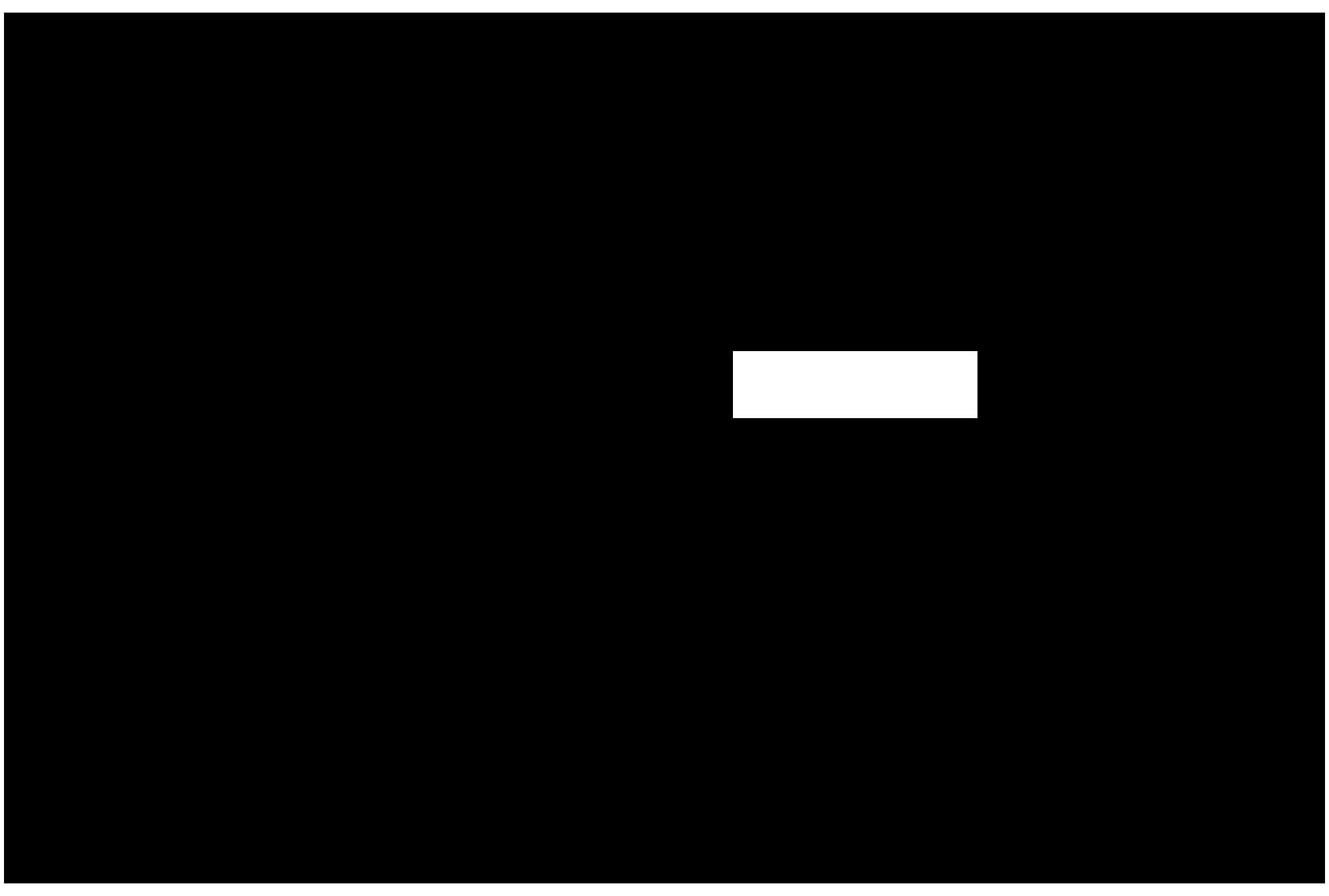 SkyTeams Logo - Hossein Lotfali - Homa Nezamabadi